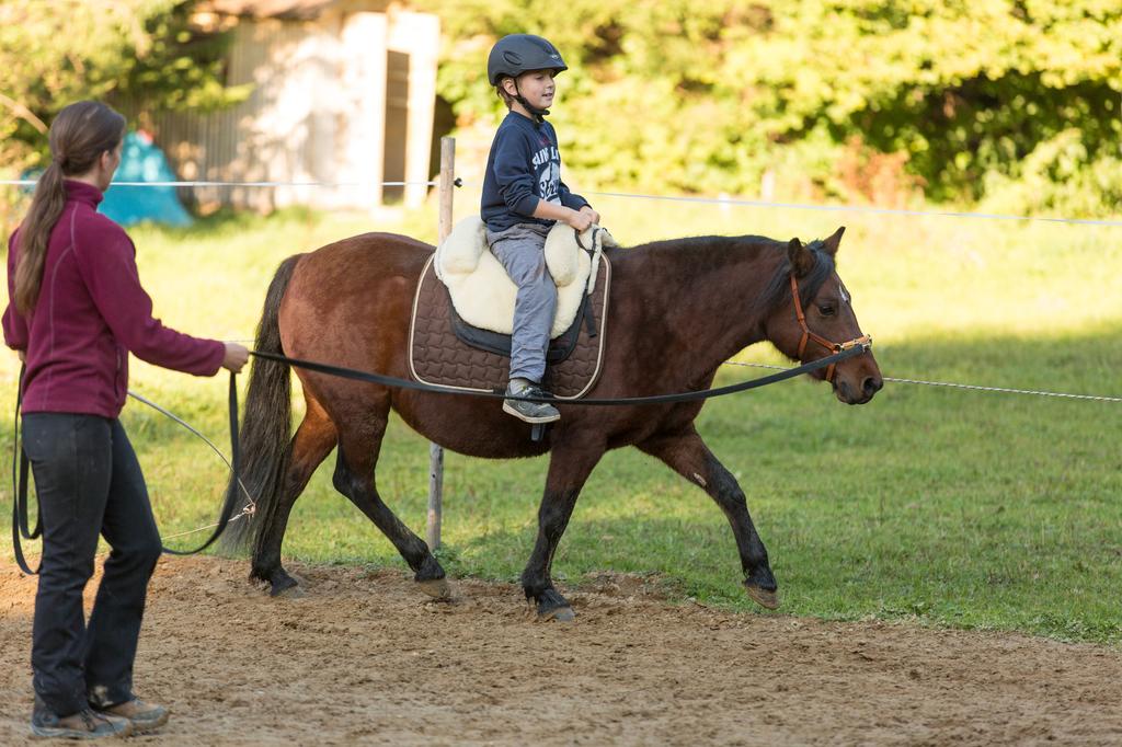 Reiten München, Reittherapie auf Curly Pferden